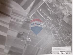 Strada PRINCIPALATeren intravilan in Carpinis Brasov - imagine 7