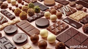 Lucratori Depozit de Ciocolata - imagine 2