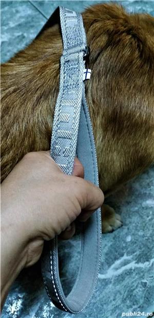 NOUA Lesa HURTTA Casual Reflective Leash pentru caini de talie MEDIE sau MARE NOUA cu eticheta - imagine 3
