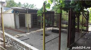 Vand Casa in Ciarda Rosie direct de la proprietari - imagine 8