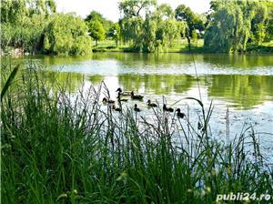 Comuna Berceni teren intravilan cu acces catre lac ! ACCEPT RATE ! - imagine 17