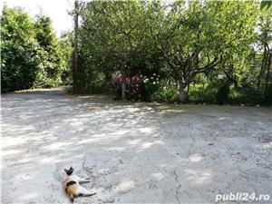 Vand Vila deosebita in Piatra Neamt 308euro /m2 locuibil  - imagine 12