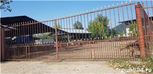 Zona Combinat, vând teren cu 2 hale metalice  - imagine 1