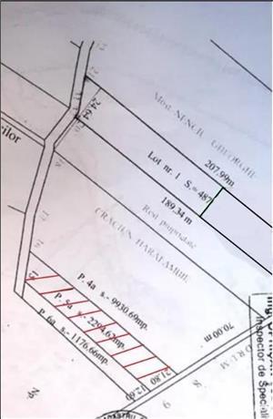 Chiajna – 2295 m² | intravilan - imagine 4
