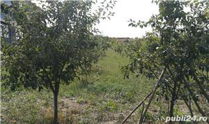 PF vand teren in Cluj - imagine 5