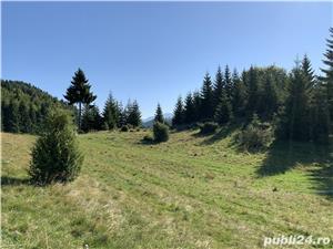Teren 50 ha in Fundata la 15 km de Bran-Moeciu - imagine 2