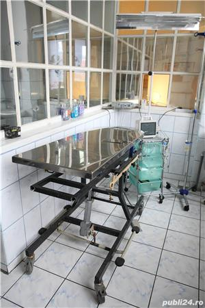 Clinica Veterinara Cluj-Napoca - de vanzare - imagine 3