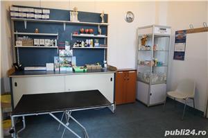 Clinica Veterinara Cluj-Napoca - de vanzare - imagine 6