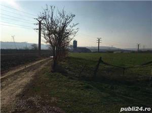 Teren Ovidiu, zona Celsy aproape de A4 - imagine 4