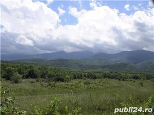 2300mp super teren intravilan cu utilitati, munte,rau,padure,strada asfaltata,zona turistica curata - imagine 9