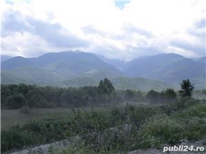 P.F.Arpasu de sus-Albota Sibiu 6000mp  teren intravilan utilitati,munte,rau,padure,strada asfaltata - imagine 14