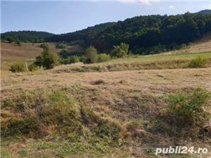 Vand teren in Gura Raului zona Marajdie - imagine 4