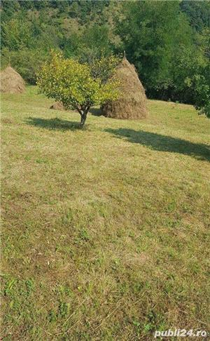 Terenuri Intravilane de vanzare in statiunea Geoagiu-Bai, judet Hunedoara - imagine 2