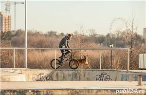 Pet Sitter / Plimb caini / Bona pt animale de companie, caini, pisici - imagine 8