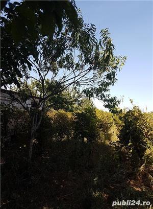 Localitatea Marasesti – de vanzare Casa cu teren ! Vie si pomi fructiferi ! - imagine 11
