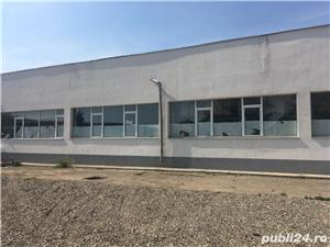 Hala / Depozit - Falticeni - Zona industriala Filatura - Suceava - Inchiriere     500 mp :    450 m - imagine 2