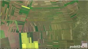 Vând 1,5 ha teren arabil în comuna Valea Mărului, sat Mândrești, jud. Galați - imagine 5
