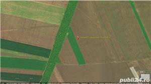 Vând 1,5 ha teren arabil în comuna Valea Mărului, sat Mândrești, jud. Galați - imagine 4