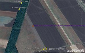 Vând 1,5 ha teren arabil în comuna Valea Mărului, sat Mândrești, jud. Galați - imagine 3