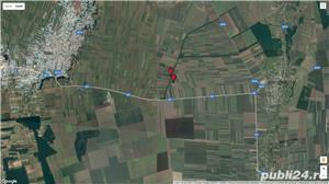 Vând 1,5 ha teren arabil în comuna Valea Mărului, sat Mândrești, jud. Galați - imagine 6