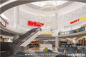 Cartierul Soarelui in Tartasesti - imagine 8