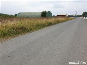 Teren Zona Industriala Sacalaz - imagine 4