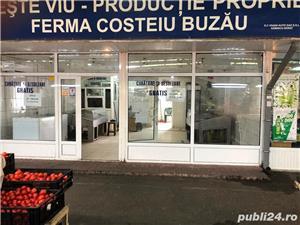 VAND magazin  in  PIATA NORD Ploiesti 55 mp (proprietar) - imagine 8