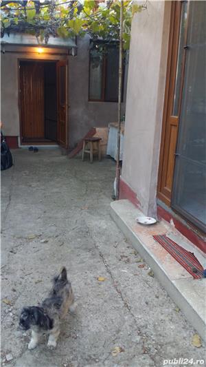 De vanzare – casa si teren, Cart. Mihai Viteazu - imagine 7
