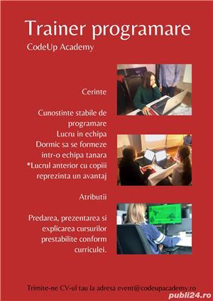 Trainer - programare - imagine 1