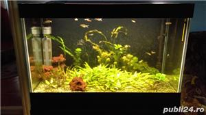 Vând acvariu 300 litri - imagine 1