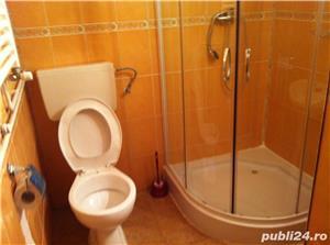 Apart. cu o camera, 50 mp, Terezian - Piata Cluj - imagine 7