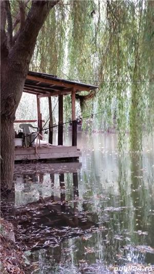 Casa cu amenajare piscicola de vanzare - 9000mp - Alba Iulia , cartier Recea - imagine 4