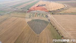 De vânzare teren intravilan 4 ha,  la ieșirea din Arad spre Iratos - imagine 6