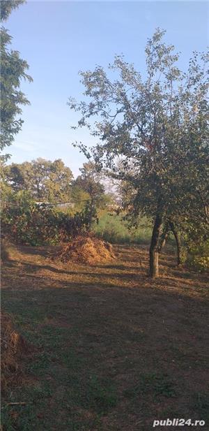 Vand casa la curte sinesti ialomita  - imagine 7