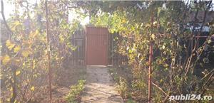 Vand casa la curte sinesti ialomita  - imagine 12