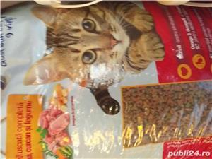Hrana caini si pisici - imagine 3