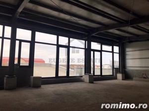 Penthouse pe doua nivele, zona Torontalului - imagine 7