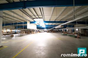 Hală industrială 2.642 mp. în Lipova - imagine 4