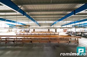 Hală industrială 2.642 mp. în Lipova - imagine 10