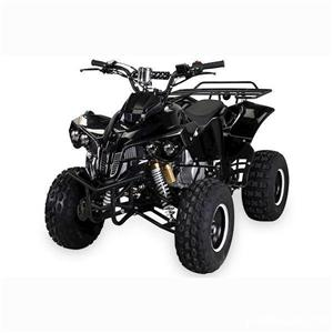ATV Grizzly R8  - imagine 4