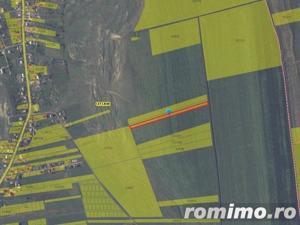 Teren arabil 4.900 mp sat Letcani jud. Iasi ID 7171 - imagine 4