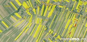 3 loturi Teren extravilan 12,500mp Targu Neamt, jud. Neamt - imagine 10