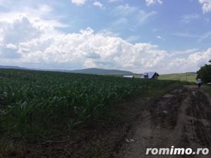 3 loturi Teren extravilan 12,500mp Targu Neamt, jud. Neamt - imagine 14