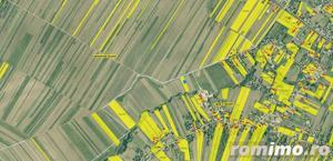 3 loturi Teren extravilan 12,500mp Targu Neamt, jud. Neamt - imagine 6