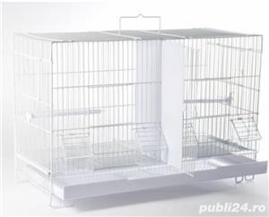Colivii duble 503 , noi, pentru canari si pasari cantatoare - imagine 3
