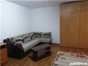 Apartament 1 camera Bucovina - imagine 2