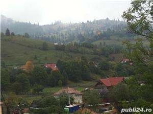 Casa de vacanta Bucovina  - imagine 9