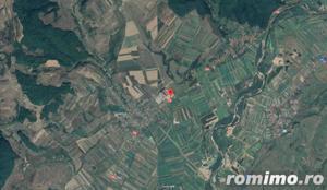 ID 9267: Teren extravilan 11.510 mp -Chiuza - imagine 17