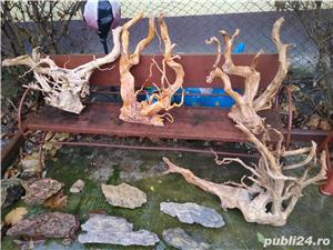 Decor acvariu pești lemn Red moor - imagine 2