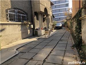 Casa de vanzare parter - 180 mp utili, Str. Delea Veche - imagine 8